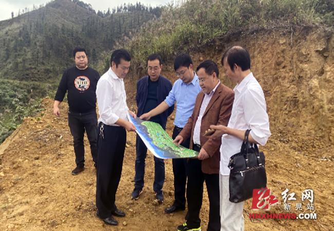 保护生态环境:市林业局督导调研我县林业重点工作.png