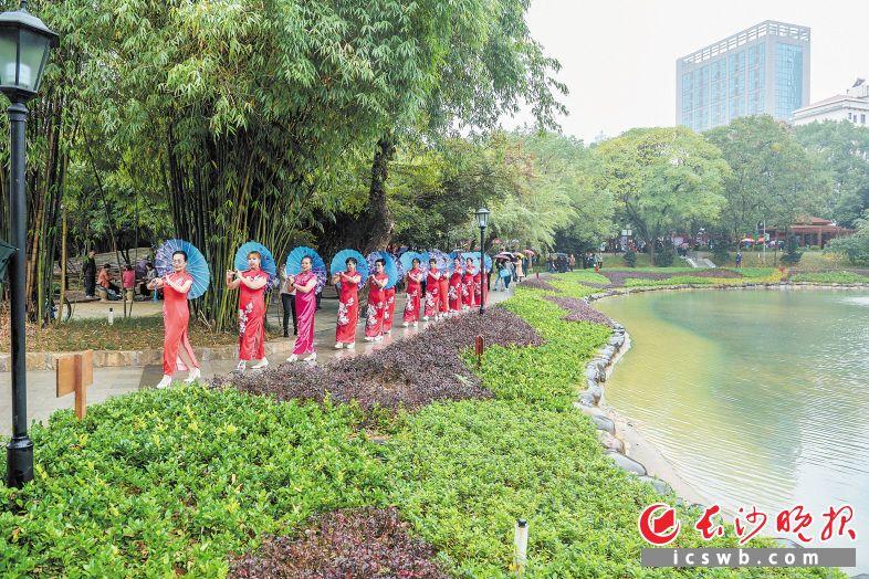 封闭改造5个月后,焕然一新的桂花公园11月1日正式开园。长沙晚报全媒体记者 陈飞 摄