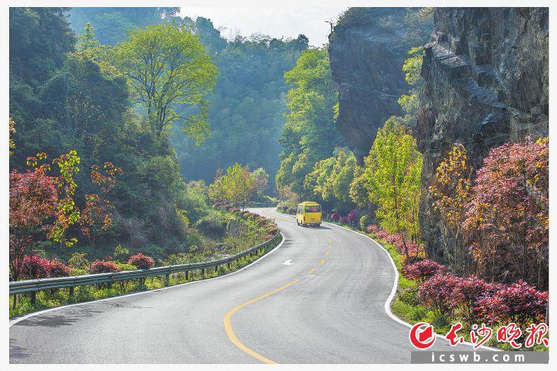 宁乡黄祖沩公路。    杨铁军  摄