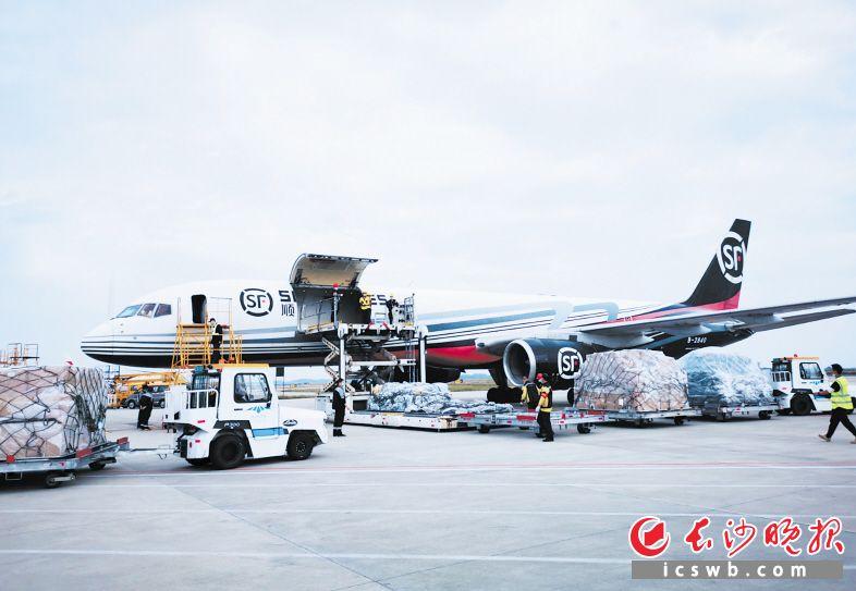 11月17日,长沙至大阪全货机航线开通,这是长沙今年开行的第十条国际货运航线。范远志摄