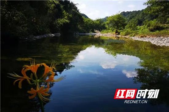 清澈干净的龙阳河.jpg