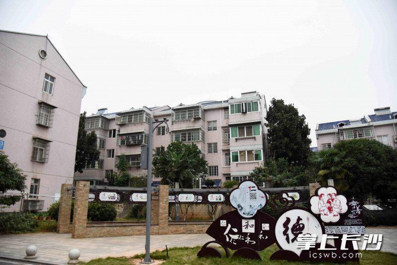 """金桂社区内,安置房告别了""""油鼻涕"""",油烟扰民问题不复存在。"""