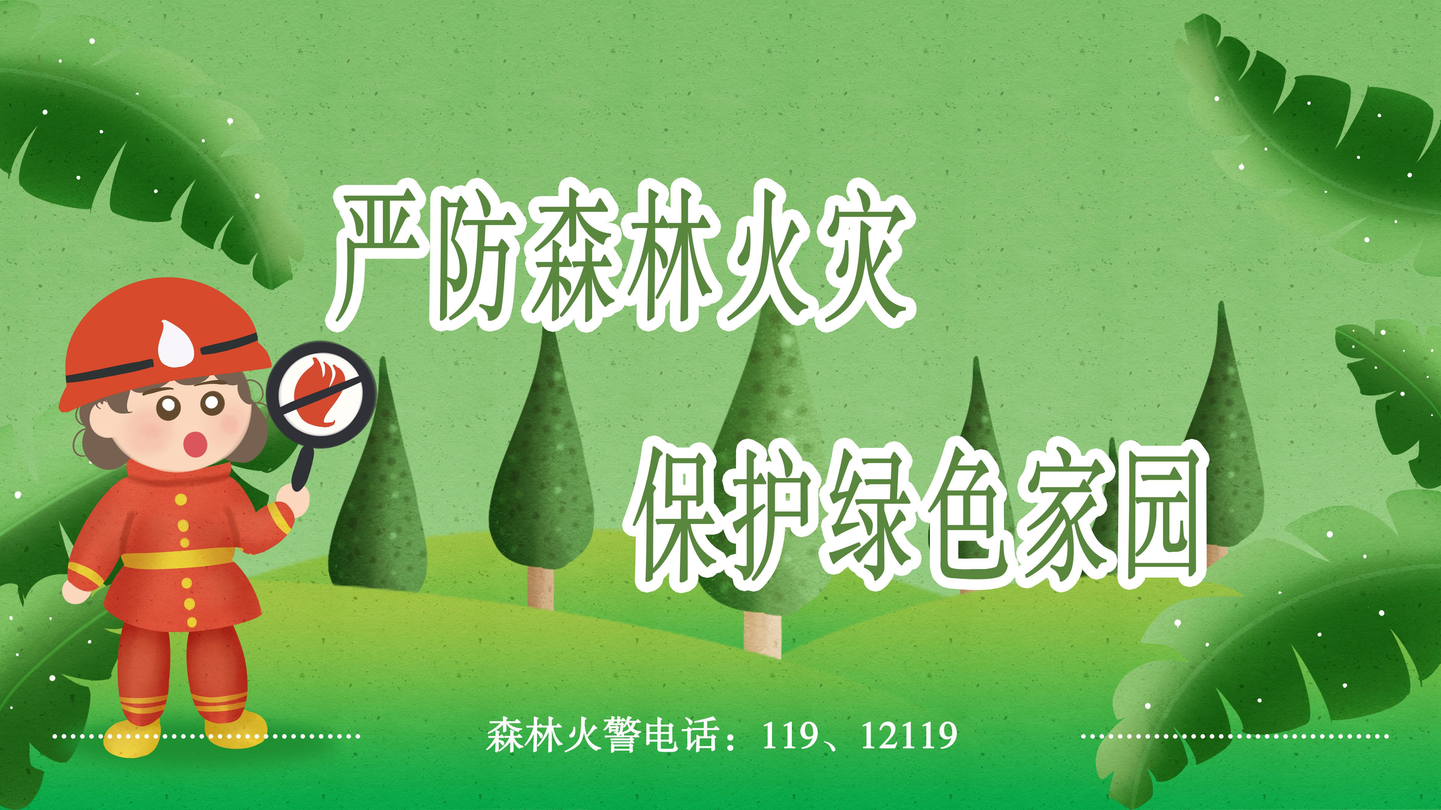 专栏 | 严防森林火灾  保护绿色家园