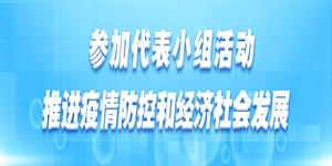 参加代表小组活动 推进疫情防控和经济社会发展