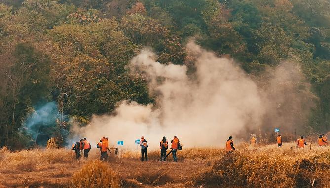 """应急演练现场消防员和参与演练的群众共同扑灭""""森林火灾"""".png"""
