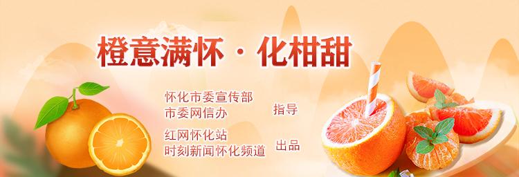 专题:橙意满怀·化柑甜