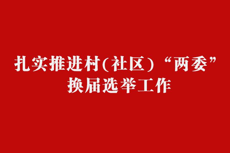 """扎实推进村(社区)""""两委""""换届选举工作"""