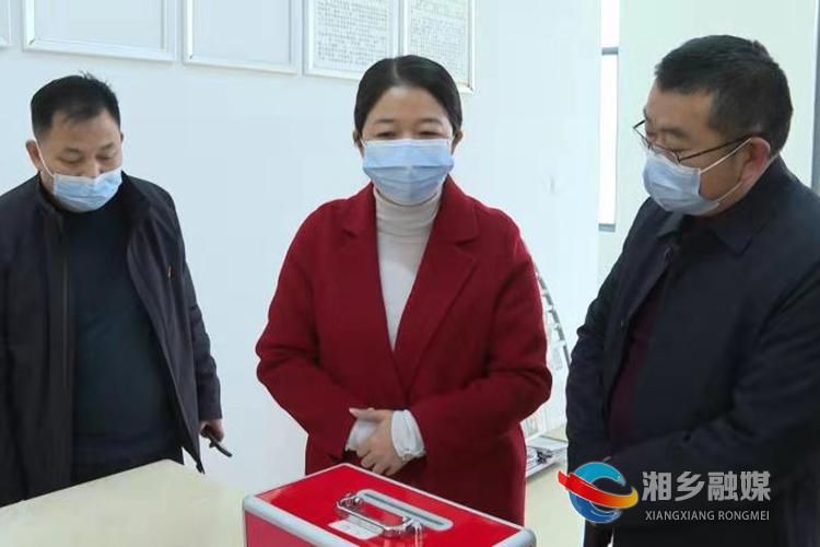 周赏玲在潭市镇督查换届选举工作。.jpg