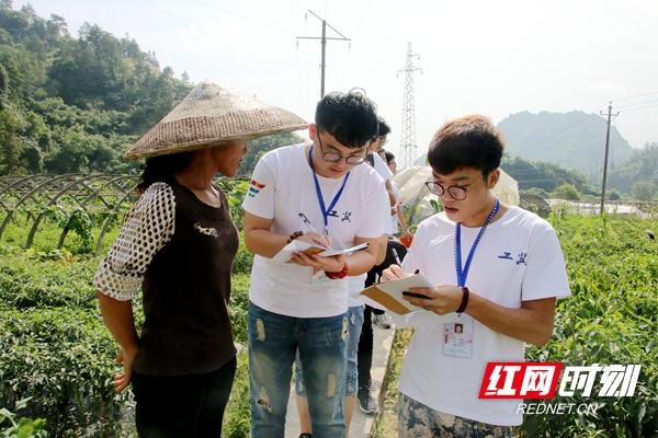 工学院调研队在调查农业基地时,队员们偶遇前来观察农作物生长状况的农民,向她了解当地的农业机械化使用率_副本.jpg