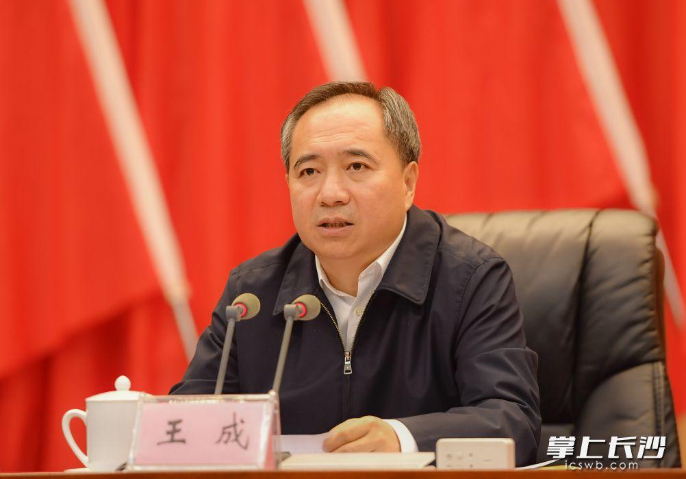 省委常委、省委组织部部长王成出席会议并讲话。