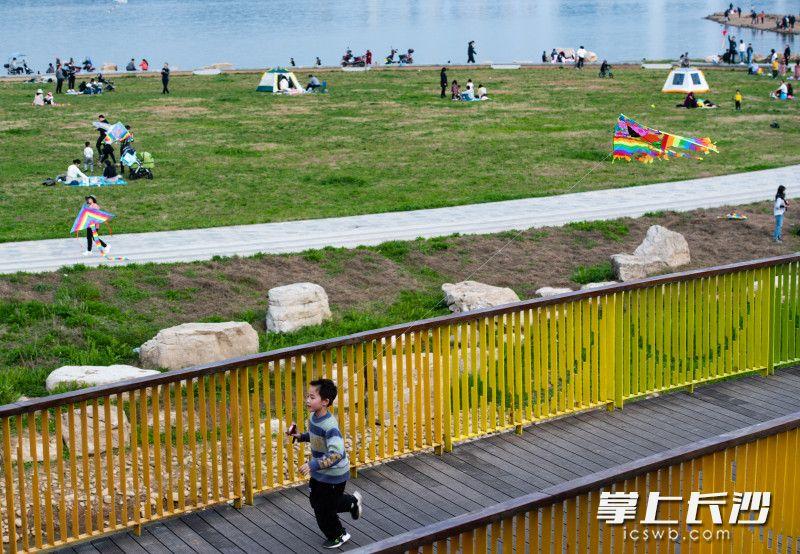 2月21日,,三汊矶大桥西湘江江滩上家长带着孩子们正在放风筝。