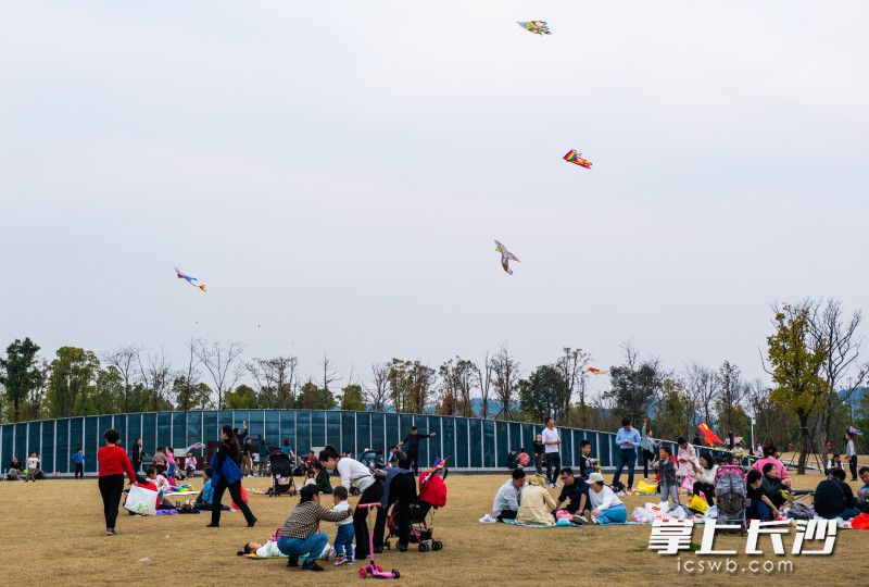 2月21日,银星湾公园市民们正在放风筝。