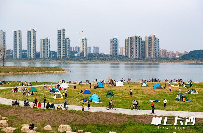 2月21日,,三汊矶大桥西湘江江滩上家长带着孩子们正在游玩,感受春天的美好。