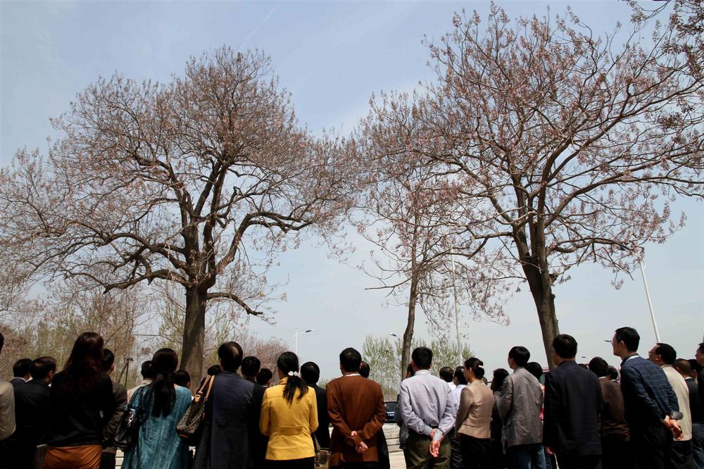 来自全国各地的党员干部在焦桐树旁,以焦裕禄为镜,学做人民的好公仆。.jpg