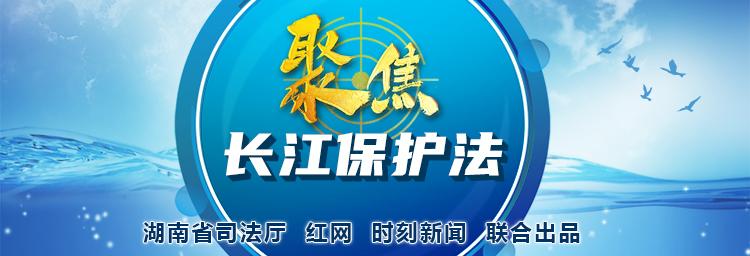 专题丨聚焦长江保护法