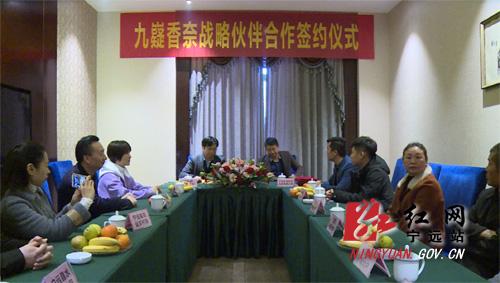 宁远:湖南金篱巴农业签订五十万斤九嶷香奈订单合同 拷贝.jpg