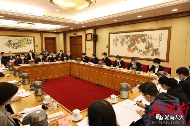 湖南代表團分組審議全國人大常委會工作報告