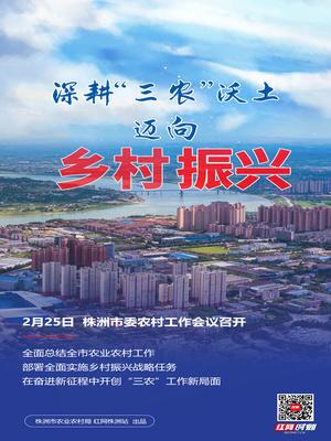 """海报丨株洲:深耕""""三农""""沃土 迈向乡村振兴"""