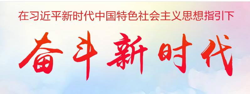 在习近平新时代中国特色社会主义思想指导下