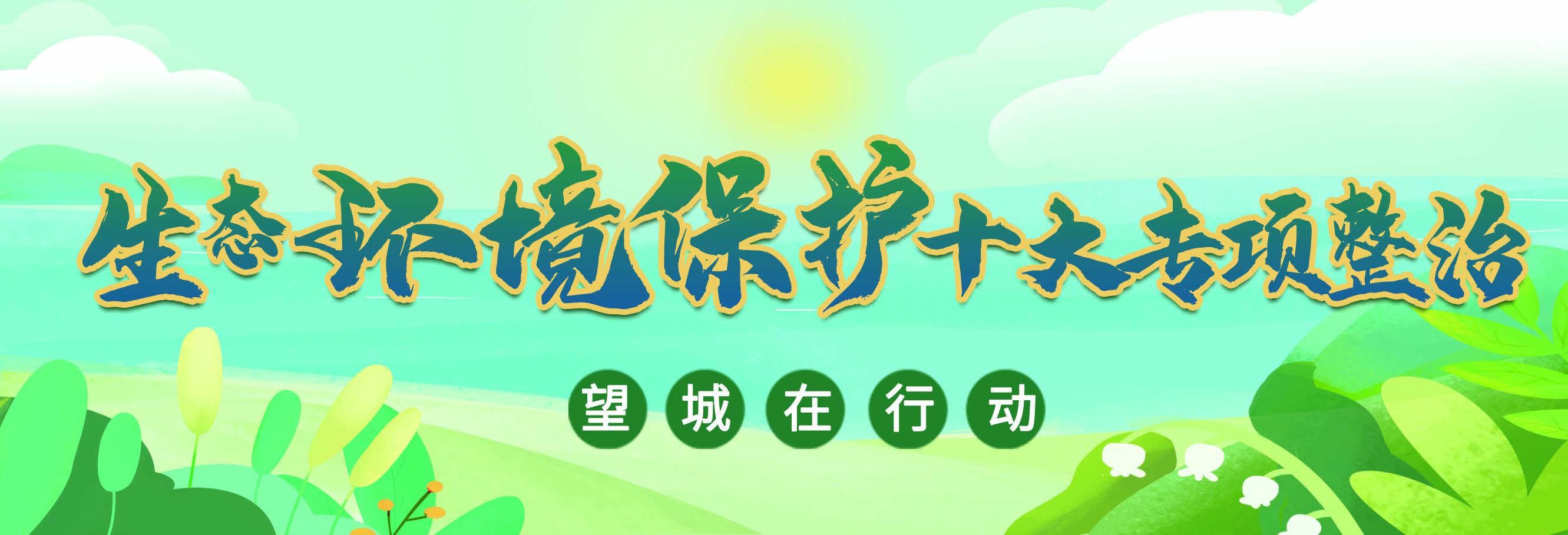 专题   生态环境保护十大专项整治