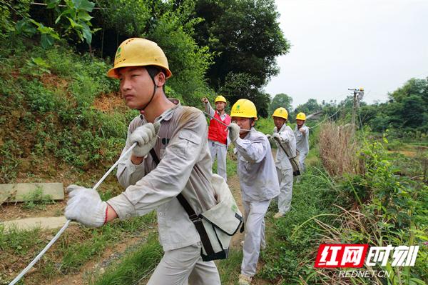 2012年6月28日,韶山农网施工现场,电网员工汗流浃背。摄影:周波.jpg