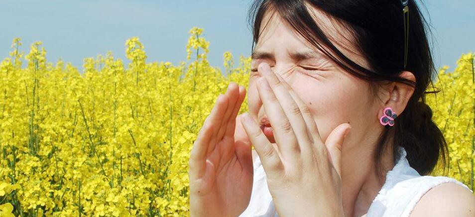 花粉致敏、飞絮扰人……莫让其中的传言添堵!