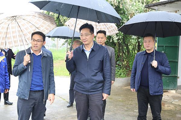 刘桢干调研中央生态环境保护督察信访交办问题