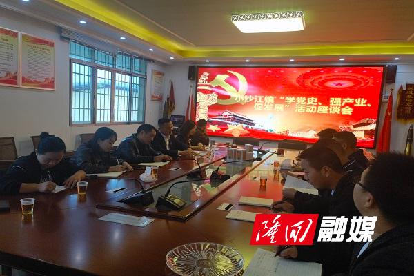 小沙江镇组织下村调研指导党史学习教育工作和产业发展情况