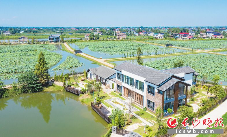 """在乔口镇,湖湘风格的荷里乔江将农舍改造成特色民宿。随着""""送图下乡""""活动的开展,今后将有更多湖湘特色风格的建筑出现在这里。"""