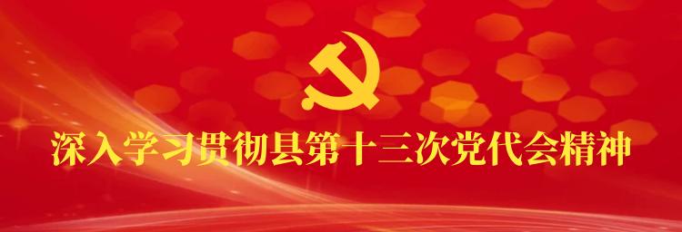 专题 | 深入学习贯彻县第十三次党代会精神