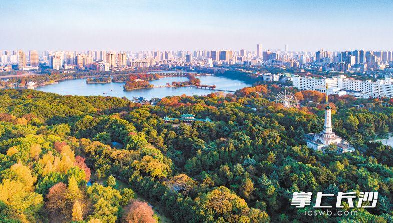 开福生态秀美,宜居福地实至名归。郁郁葱葱的烈士公园,成为市民和游客休闲观光好去处。 长沙晚报全媒体记者 邹麟 摄