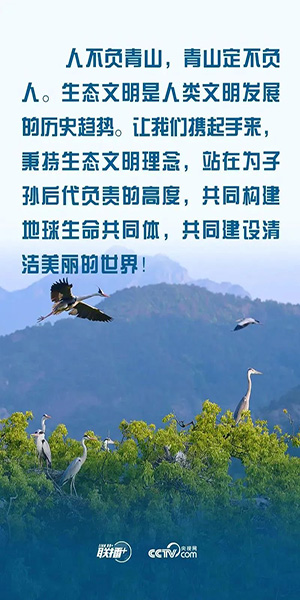 WechatIMG3356.jpg