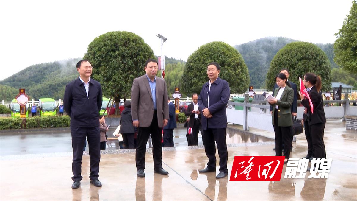 """""""追梦中华 幸福湖南""""2021海外华文媒体采访团走进岩口镇向家村"""